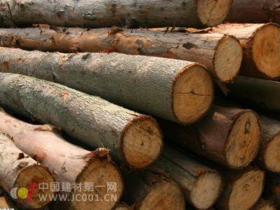 牡丹江打造木业之都