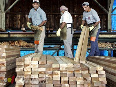 美国木材占领阿联酋市场