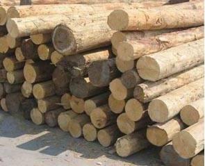 全球木材销量分析 几家欢笑几家愁