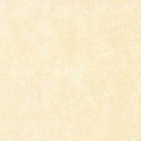 斯米克普通釉面砖-杜勒丽配套地砖