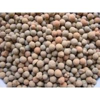 最大的页岩陶粒生产基地|圣瑞耐材