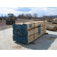 美国进口白橡原木