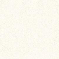 南京陶瓷-抛光砖-金科陶瓷-8H801