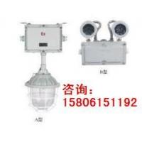 LED防爆应急灯(BAD52 )