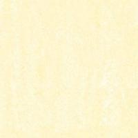 博信陶瓷阳光海岸 超微粉系列HA6102 HA8102