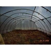 蝗虫养殖网/黄鳝养殖网/·水产养殖网/蝗虫养殖网网