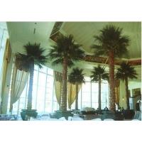 供应星级酒店室内高档保鲜植物