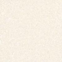 金舵陶瓷领秀中华PF8102
