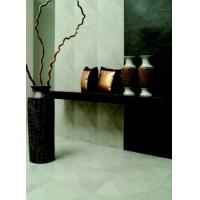 东鹏陶瓷釉面砖