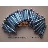 专业生产国标膨胀螺栓