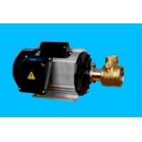 高压水泵+铝壳电机