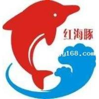 佛山木门厂家佛山红海豚实木门厂诚招云南各市代理