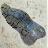 贝壳装饰板马赛克