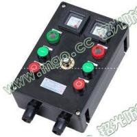 BXK8030防爆防腐控制箱BFK8060防爆防腐控制箱ZX