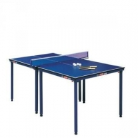室內乒乓球臺,多功能實用,國奧體育專營-- 國奧體用用品