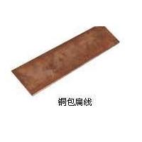 铜包钢扁线/铜包钢绞线