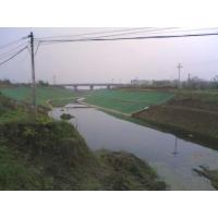 重庆生产价格规格绿化种植网三维植被网