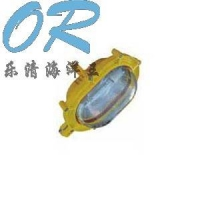 BFE8120防爆应急灯