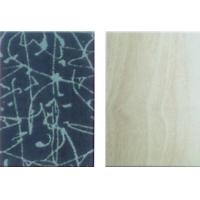 第五墙无机预涂装饰板-艺术彩印板