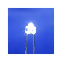 LED食人鱼