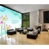 河南赛欧福壁纸有限公司长期供应无纺布大型壁画壁纸