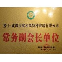 成都市工商聯絡玻璃行業商會常務副會長單位