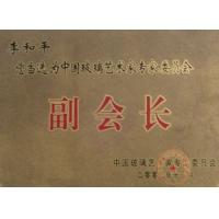 中國玻璃藝術專家委員會副會長
