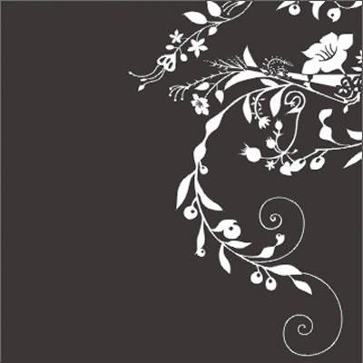 成都欣和风特种玻璃-(磨花系列)-磨花系列产品图片,欣
