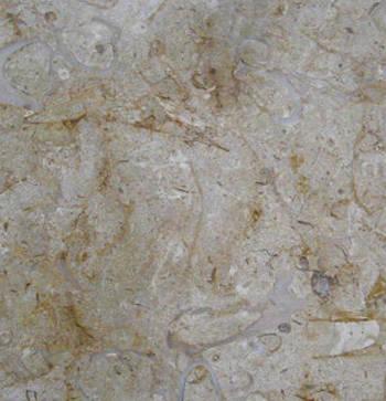 新塔星石材 进口大理石 贝沙金 新塔星石材 成都新塔星石材 西部建材网高清图片