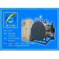 电蒸汽锅炉,电蒸汽炉