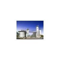 轻型钢结构 建筑钢结构工程 体育健身场所 单层厂房 仓库