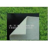 专业生产土工膜,HDPE土工膜,土工膜价格最低 厂家直销