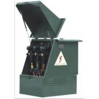 厂家现货户外10KV高压欧式美式电缆分支箱/分接箱 质保一年