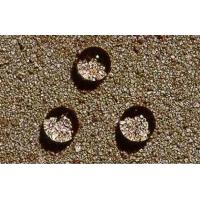 氟硅结构石材防水剂防护剂厂家直销