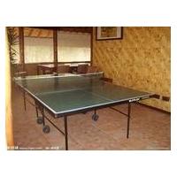 宇星牌乒乓球案子 德州飞宇乒乓球桌 乒乓球台