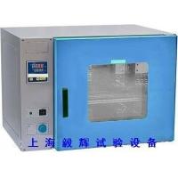 上海低价高温烤箱,工业烘箱生产厂家,鼓风干燥箱制造商