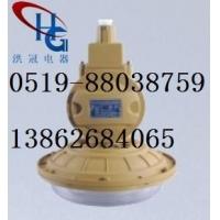 洪冠SBD1102-YQL40免维护节能防爆灯,防爆无极灯