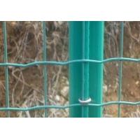 山林养鸡网,养鸡铁丝网,养殖围网,养鸡围栏网