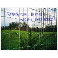 圈地围网丨圈地铁丝网丨蔬菜大棚圈地网丨果园围栏网