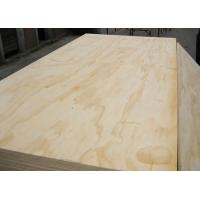供应松木面胶合板