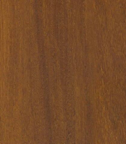 2136福建铁木