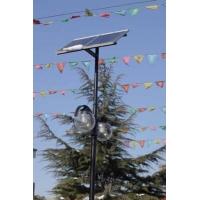 天普太陽能庭院燈