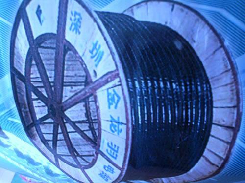金龙羽电缆VV