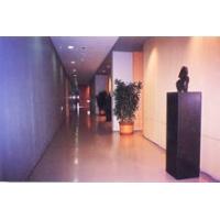 科鑫塑胶地板-瑞典安德森塑胶地板运动系列