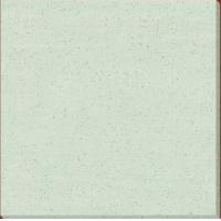 嘉路仕陶瓷- 微晶玉石系列 JD8303