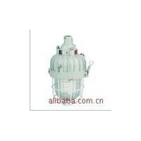 防爆节能灯,BAD81-J42J,防爆灯,节能灯,TCP42