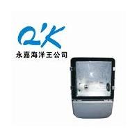 NFC9140节能型广场灯