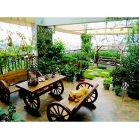 深圳园艺景观入户花园设计施工