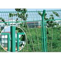铁丝网围栏|铁丝网护栏| 铁丝网围墙
