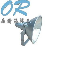 OR-NTC9200防震型超强投光灯